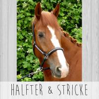 Halfter & Stricke